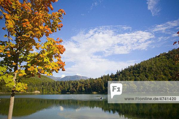 Kalterer See im Herbst  Eppan  Montiggler Seen  Südtirol  Italien  Europa Kalterer See im Herbst, Eppan, Montiggler Seen, Südtirol, Italien, Europa