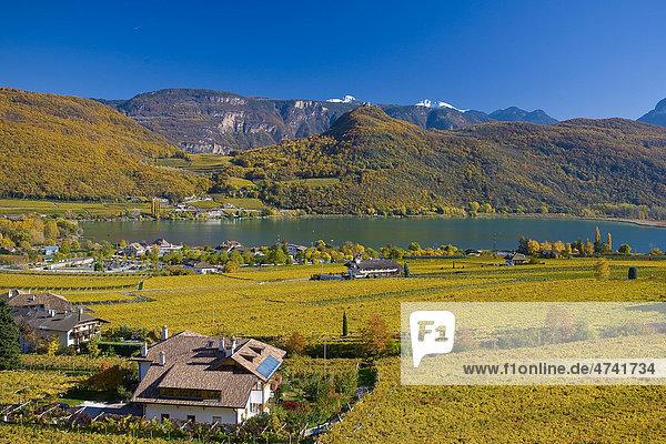 Herbstlandschaft um den Kalterer See  Kalterersee  Südtirol  Italien  Europa
