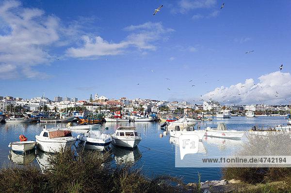 Yachthafen mit Fischerbooten  Lagos  Faron  Algarve  Portugal  Europa