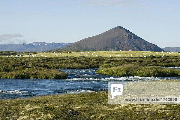 Fertile farmland around Lake Myvatn in northern Iceland  Iceland  Europe