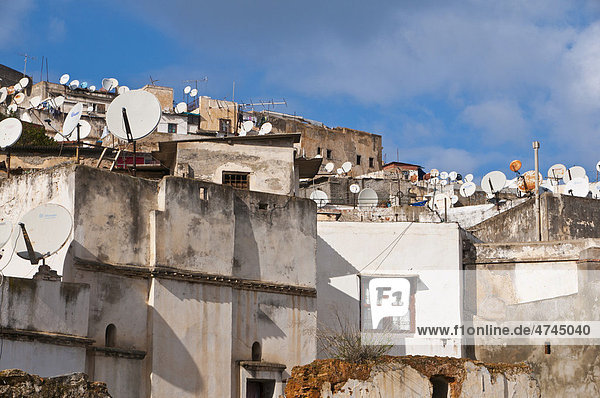 Houses in the Kasbah  Unesco World Heritage site  historic district of Algiers  Algeria  Africa