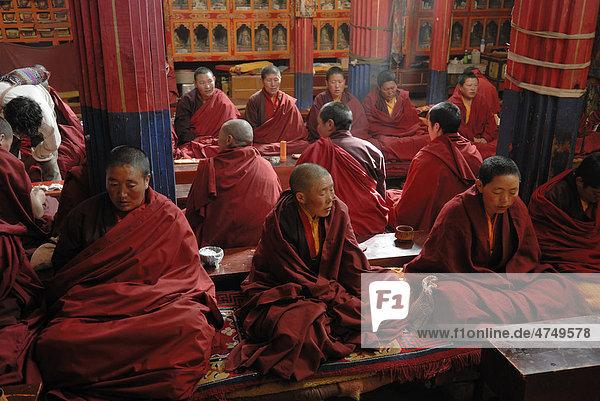 Nonnen im Nonnenkloster Terdrom  Tibet  China  Asien