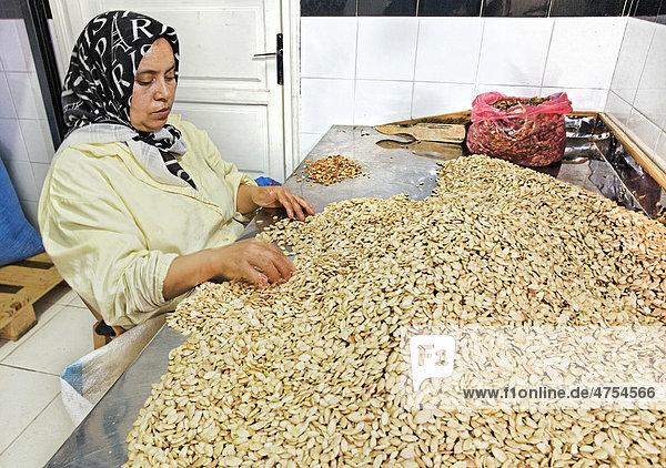 Vor der Auspressung des Arganöls werden die Mandeln der Argannüsse (Argania spinosa) von Mina El Ajjane von Hand einer Qualitätskontrolle unterzogen  Ölmühle Sidiyassine  Essaouira  Marokko  Afrika