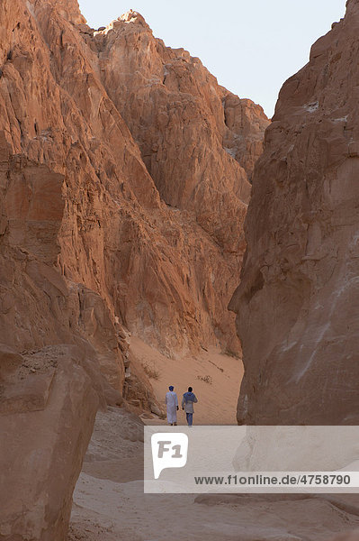 Wanderung durch den White Canyon  Panorama  Sinai  Ägypten  Nordafrika  Afrika