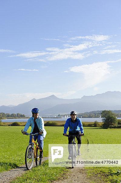 Radfahrer  Radtour am Chiemsee  Schafwaschener Bucht  Chiemgau  Oberbayern  Bayern  Deutschland  Europa