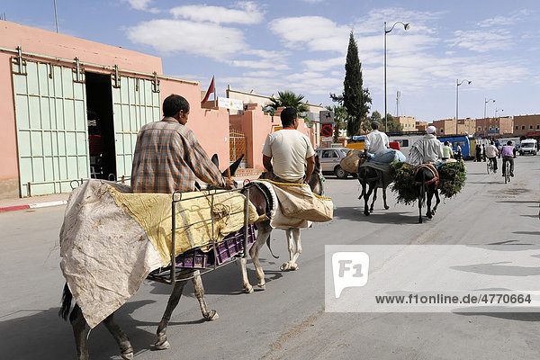 Vendors with donkeys on the way to the weekly market  Rissani  Morocco  Africa