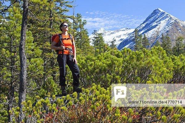 Frau beim Bergwandern  Hohe Tauern  Salzburger Land  Österreich