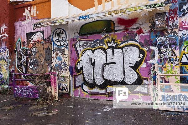 Graffiti  Alter Schlachthof Wiesbaden  Hessen  Deutschland  Europa