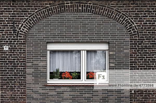 Modernes Kunststofffenster in alter  zugemauerter Toröffnung  kleines Bauernhaus am Niederrhein  Krefeld Gellep-Stratum  Nordrhein-Westfalen  Deutschland  Europa