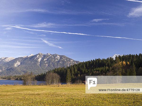Barmsee mit Wiesen und Heuhütte  Bayern  Deutschland  Europa
