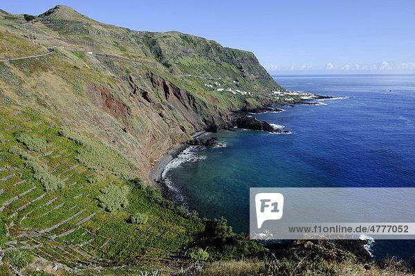 Bucht von Maia  Weinberge auf der Insel Santa Maria  Azoren  Portugal