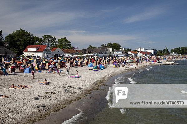 Strand  Ostseebad Kellenhusen  Lübecker Bucht  Ostseeküste  Schleswig-Holstein  Deutschland  Europa