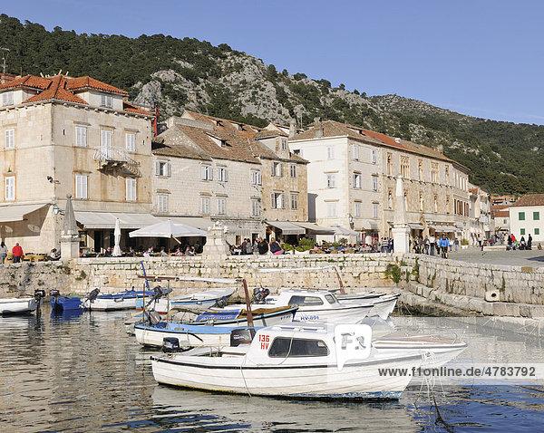 Fishing boats in the harbour  Hvar  Hvar Island  Croatia  Europe