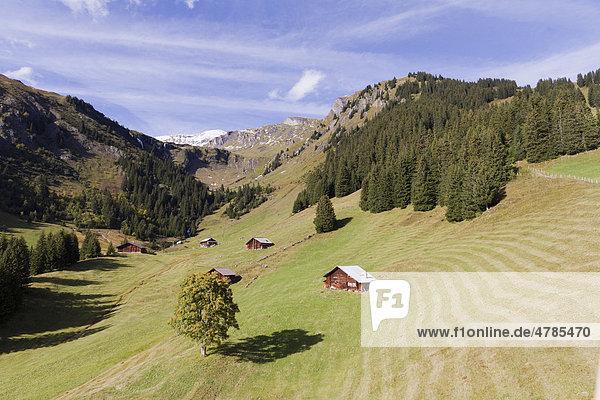 Almhütten am First oberhalb von Grindelwald  Berner Oberland  Kanton Bern  Schweiz  Europa