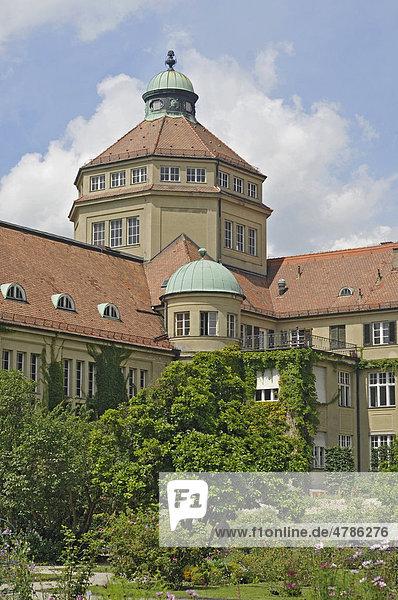 Botanischer Garten  München  Bayern  Deutschland  Europa