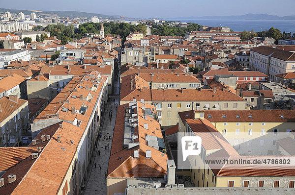 Historic town centre  overlooking Zadar from the Campanile of Sveti Stosija  Zeleni Trg  Zadar  Croatia  Europe
