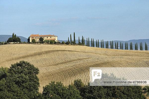 Landschaft mit Bauernhaus auf einem Hügel  Reihe von Zypressen  gepflügtes Feld  Val d'Orcia  Orciatal  Toskana  Italien  Europa