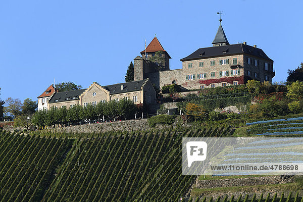 Schloss Eberstein bei Gernsbach im Nordschwarzwald  Baden-Württemberg  Deutschland  Europa