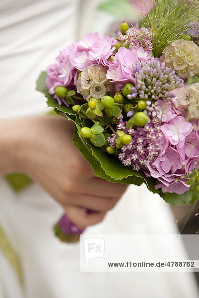 Halskraut Trachelium Caeruleum Hochzeitsstrauss Hortensie