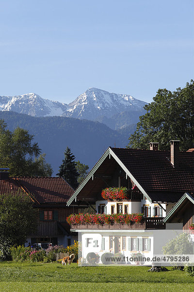 Haus in Lenggries-Anger  hinten Karwendelgebirge mit Demeljoch  Isarwinkel  Oberbayern  Bayern  Deutschland  Europa