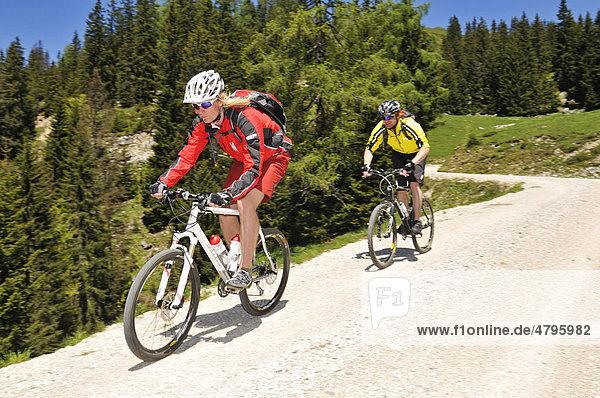 Mountain bikers  downhill to Kreuzangeralm  Reit im Winkl  Bavaria  Germany  Europe