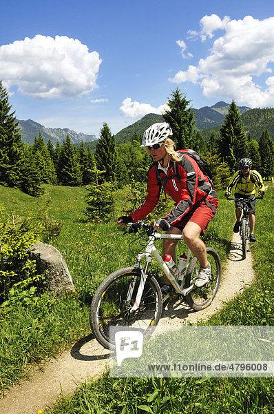 Mountain bikers on the Nattersbergalm alpine pasture  Reit im Winkl  Bavaria  Germany  Europe
