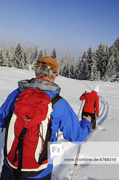 Wanderer bei Winterwanderung auf dem ersten Premium-Winterwanderweg Deutschlands  Hemmersuppenalm  Reit im Winkl  Bayern  Deutschland  Europa