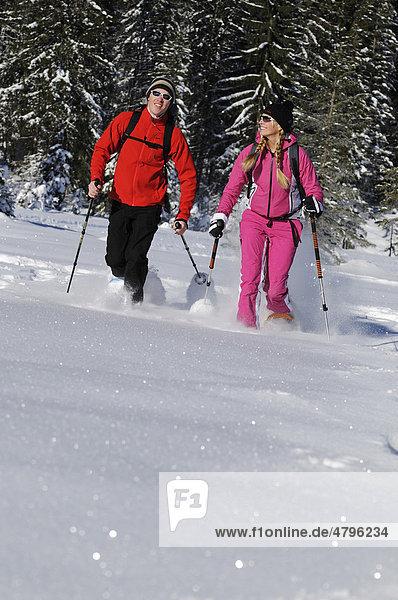 Schneeschuhläufer  Hemmersuppenalm  Reit im Winkl  Bayern  Deutschland  Europa
