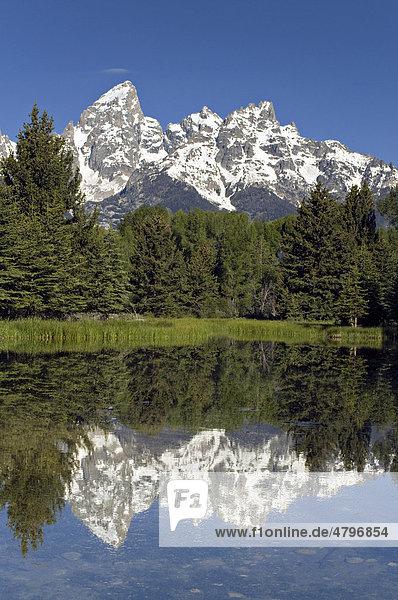 Biber-See bei Schwabacher Landing  dahinter Teton Range  Grand Teton Nationalpark  Wyoming  USA  Nordamerika