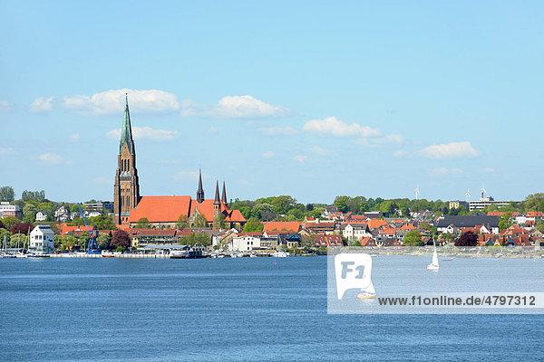 Blick auf Schleswig an der Schlei  Schleswig-Holstein  Deutschland  Europa