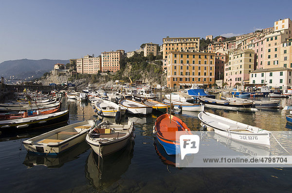 Harbour  Camogli  Liguria  Italy  Europe