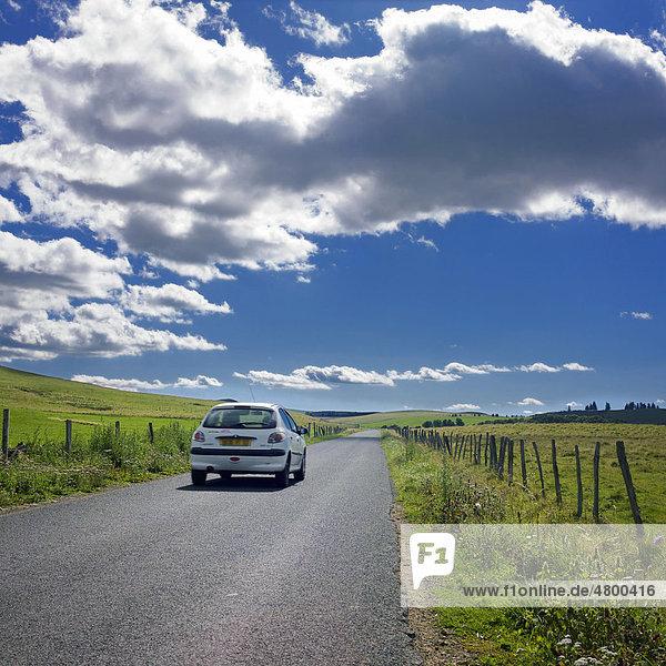 Straße  Massif Sancy  DÈpartement Puy-de-DÙme  Region Auvergne  Frankreich  Europa