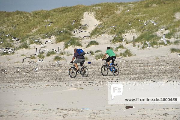 Zwei Fahrradfahrer auf Mountainbikes am Strand  Nordseeküste  Dänemark  Europa