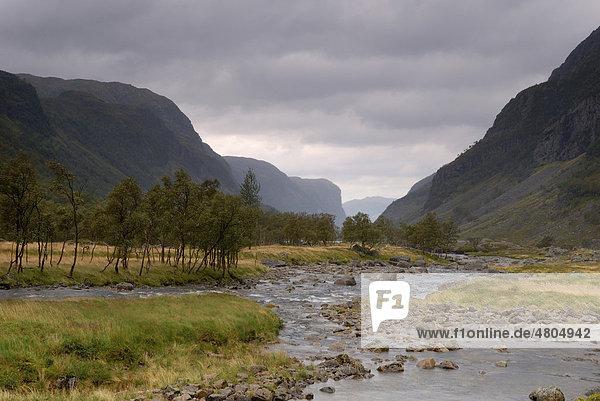 Wild river in Norway  Europe