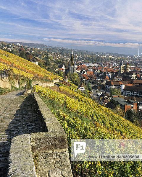 Blick über Esslingen am Neckar im Herbst  Baden-Württemberg  Deutschland  Europa