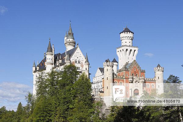 Blick vom Osten  Schloss Neuschwanstein  Ostallgäu  Allgäu  Schwaben  Bayern  Deutschland  Europe
