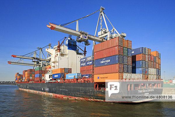 Containerschiff im Containerhafen  Hamburg  Deutschland  Europa