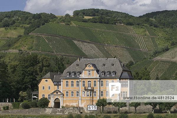Schloss Marienburg  Leutesdorf  Barockschloss  Rhein  dahinter Weinberge  Rheinland-Pfalz  Deutschland  Europa