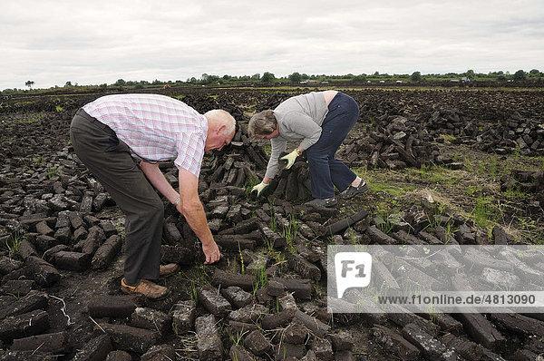 Torfbriketts für den privaten Hausbrand werden von den Einwohnern selbst getrocknet  Birr  Offaly  Midlands  Irland  Europa