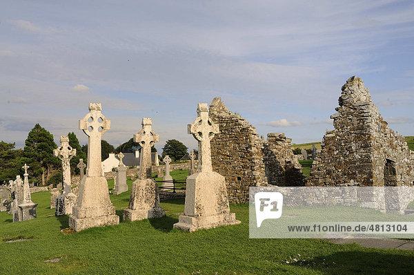 Hochkreuze bei den Klosterruinen Clonmacnoise am Shannon  Midlands  Republik Irland  Europa