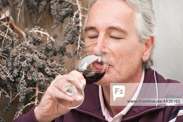 Italien  Südtirol  reifer Mann trinkt Wein