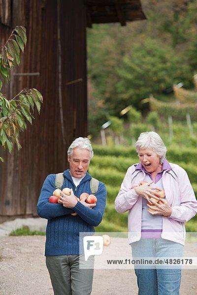 Italien  Südtirol  Äpfel tragendes reifes Paar  lächelnd