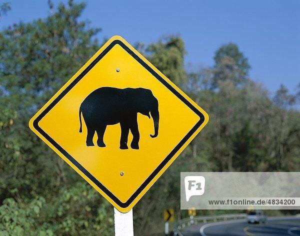 Urlaub Reise Fernverkehrsstraße Zeichen Elefant Sehenswürdigkeit Asien Chiang Mai Signal Thailand Tourismus Urlaub,Reise,Fernverkehrsstraße,Zeichen,Elefant,Sehenswürdigkeit,Asien,Chiang Mai,Signal,Thailand,Tourismus