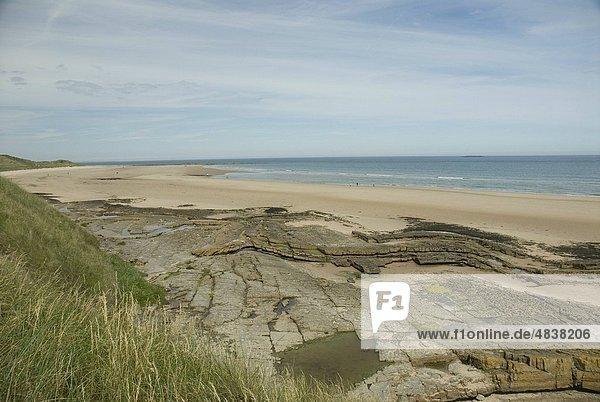 Felsen  Küste  Sand  Düne  England