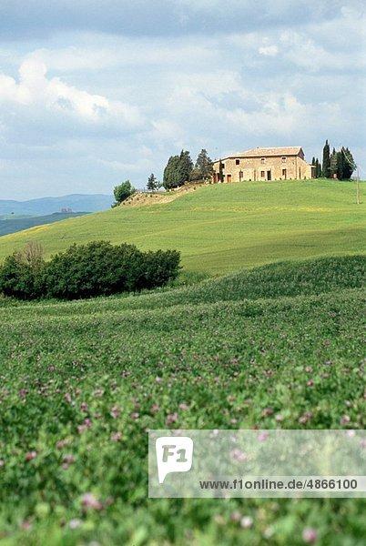 Europa  Italien  Toskana