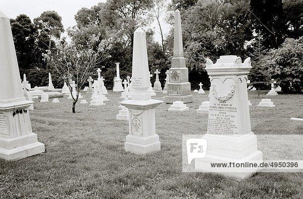 Krieg  Grabmal  britisch  Friedhof  Istanbul