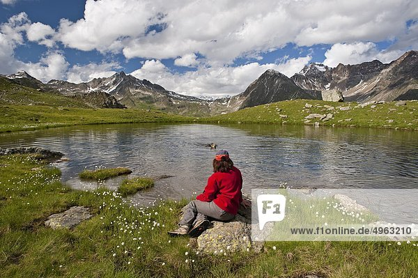 Italy  Lombardy  Stelvio National Park  Monticelli Lake  in background Gavia Pass