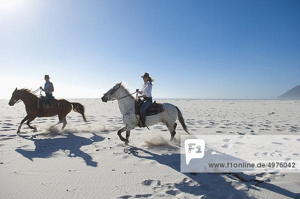 2 Personen auf Pferden im Sand