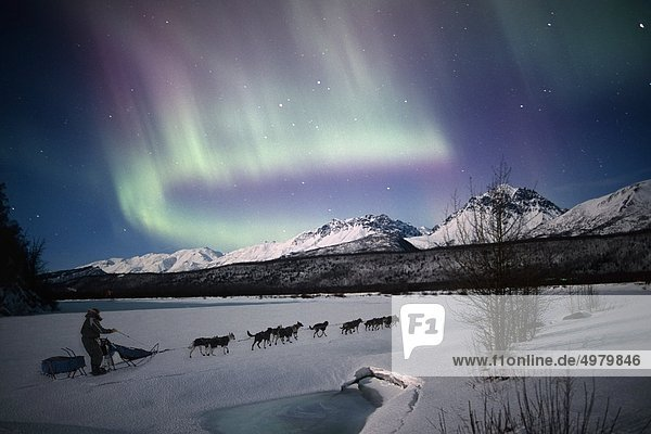 Szenische Ansicht der Dog mushing Team auf dem Matanuska River mit Northern Lights Overhead  Matanuska-Susitna Valley  South Central Alaska  Winter. COMPOSITE