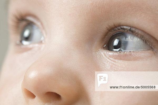 Augen eines Babys Augen eines Babys